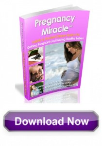 Download Pregnancy Miracle 2